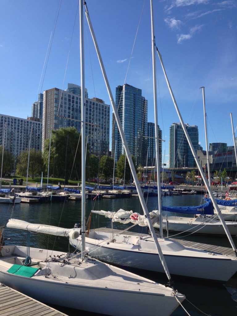 Before we board - the marina down by the Waterfront.