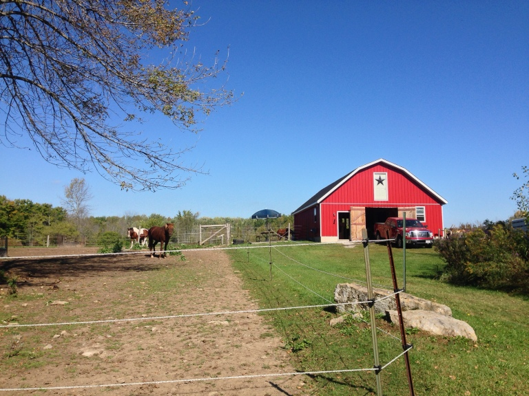The barn and horses fields.